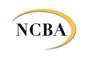 N.C. Bruining & Associates